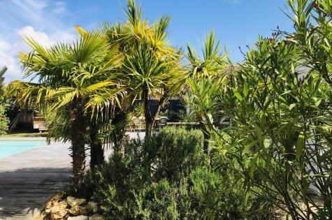 La-Plantation - location à Les Portes-en-Ré